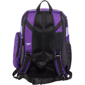 speedo Teamster Backpack L Unisex, purple